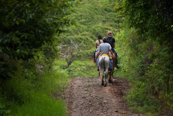 horse riding with costa rica extreme