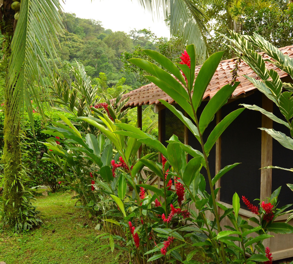 cabina in costa rica